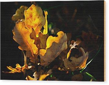 Autmn Leaf Wood Print