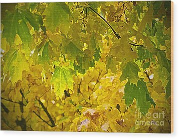 Autumn - Mellow Time Wood Print by Gwyn Newcombe