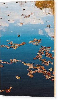 Autumn - 3 Wood Print by Okan YILMAZ