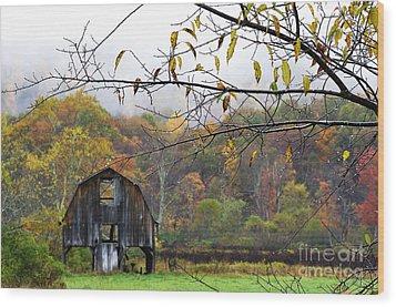 Autumn Along Tioga Road Wood Print by Thomas R Fletcher