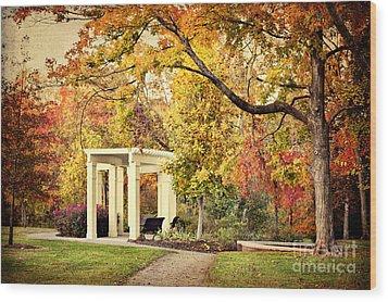 Autumn Arbor Wood Print by Cheryl Davis