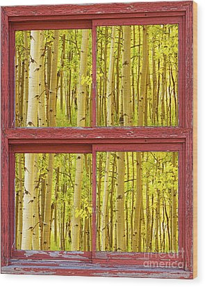Autumn Aspen Trees Red Rustic Picture Window Frame Photos Fine A Wood Print by James BO  Insogna