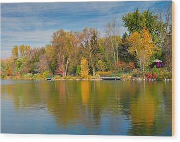 Autumn At Mill Pond Park Wood Print by Luba Citrin