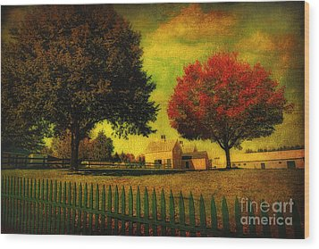 Wood Print featuring the photograph Autumn At The Farm by Gina Cormier