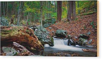 Autumn At The River Wood Print by David Hahn
