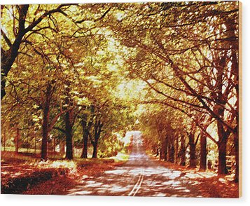 Autumn Avenue Wood Print by Linde Townsend