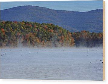 Autumn Backdrop Wood Print by Douglas Barnard