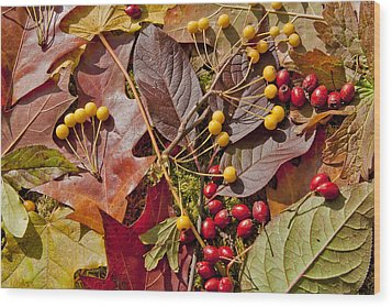 Autumn Berries And Leaves Background  Wood Print by Aleksandr Volkov