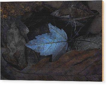 Autumn Blue Wood Print by Ron Jones