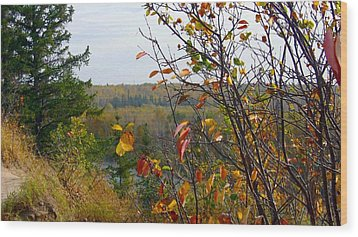 Autumn By The River Wood Print by Jim Sauchyn