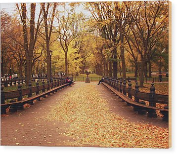 Autumn - Central Park - New York City Wood Print by Vivienne Gucwa