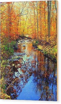 Autumn Colors 11 Wood Print