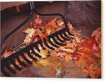 Autumn Colors Wood Print by Luis Esteves