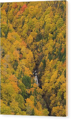 Autumn Colour And Waterfalls, Cape Wood Print by John Sylvester