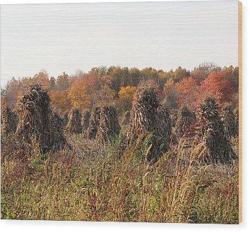 Autumn Corn Wood Print by Donna Bosela
