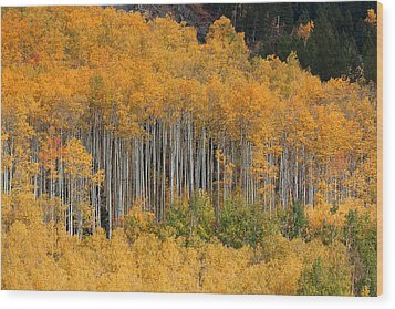 Wood Print featuring the photograph Autumn Curtain by Jim Garrison