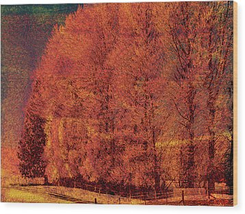 Autumn Days Wood Print