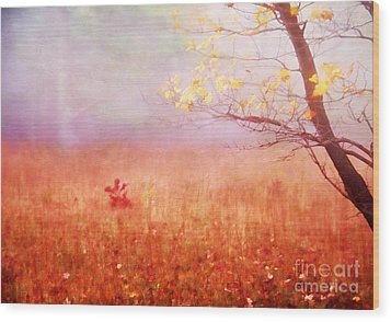 Autumn Dreams Wood Print by Darren Fisher
