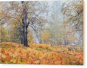 Autumn Dreams Wood Print by Evgeni Dinev