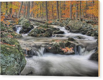 Autumn Dreams Wood Print by JC Findley