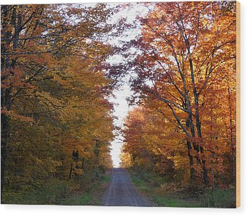Autumn Fire Wood Print by Terry Eve Tanner