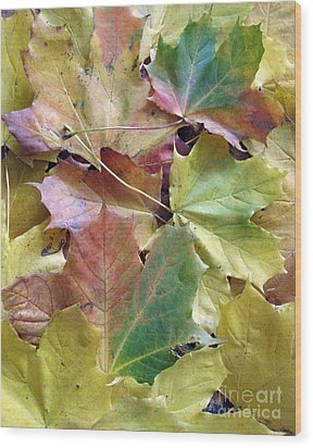 Autumn Foliage Wood Print by Ausra Huntington nee Paulauskaite