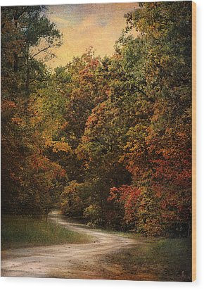 Autumn Forest 1 Wood Print by Jai Johnson