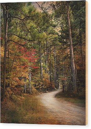 Autumn Forest 2 Wood Print by Jai Johnson