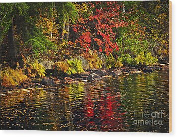 Autumn Forest And River Landscape Wood Print by Elena Elisseeva