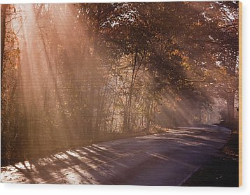 Wood Print featuring the photograph Autumn God Light by Tom Singleton