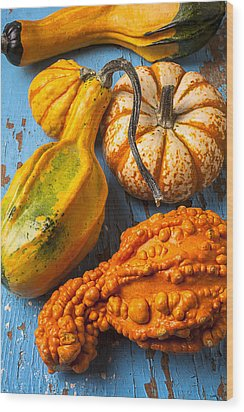 Autumn Gourds Still Life Wood Print