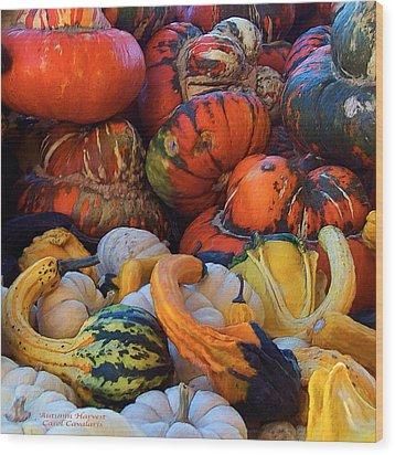 Autumn Harvest Wood Print by Carol Cavalaris