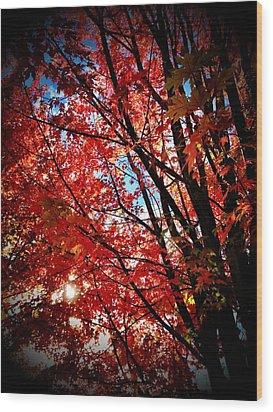 Autumn Hymn Wood Print by Anna Bree
