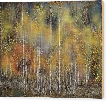 Autumn Impression Wood Print