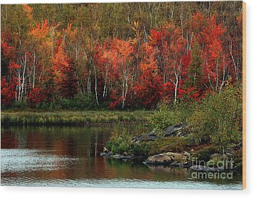 Autumn In Canada 2 Wood Print by Marjorie Imbeau