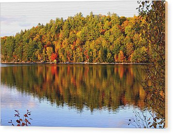 Autumn In Cottage Country Wood Print by Douglas Pike