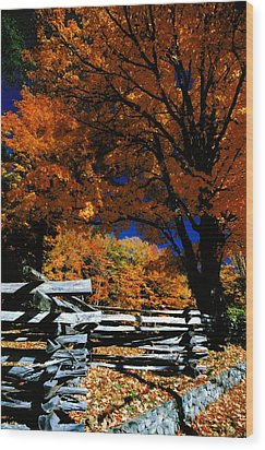 Autumn In Holderness Wood Print by Rick Frost