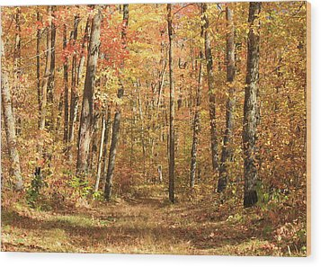 Wood Print featuring the photograph Autumn In Minnesota by Penny Meyers