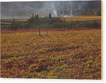 Autumn In Napa Valley Wood Print by Garry Gay