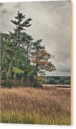 Autumn In Nh Wood Print by Edward Myers