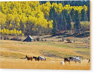 Autumn In Pagosa Wood Print by Johanne Peale