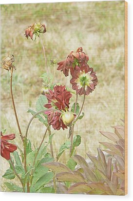 Autumn In The Garden  Wood Print by Pamela Patch