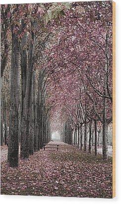 Autumn In The Grove Wood Print by Angel Jesus De la Fuente