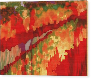 Autumn In The Piedmont Wood Print by Patricia L Conklin