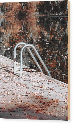Autumn Ladder Wood Print by David Taylor