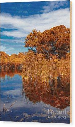 Autumn Landscape Wood Print by Gabriela Insuratelu