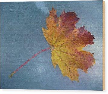 Autumn Leaf Under Glass Wood Print by Margie Avellino