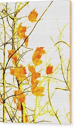 Autumn Leaves Abstract Wood Print by Andee Design
