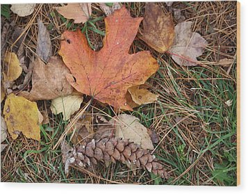 Wood Print featuring the photograph Autumn Leaves by Donna  Smith