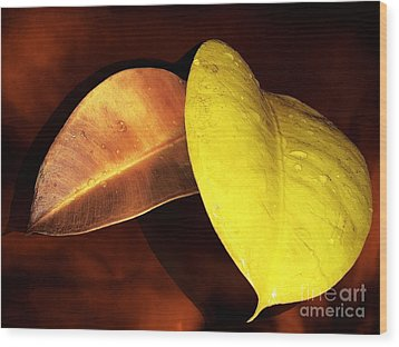Autumn Leaves Wood Print by Ellen Cotton